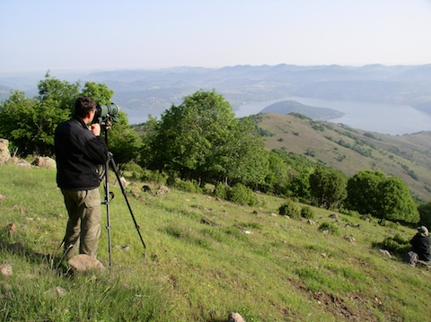 Birdwatching Holidays in Bulgaria